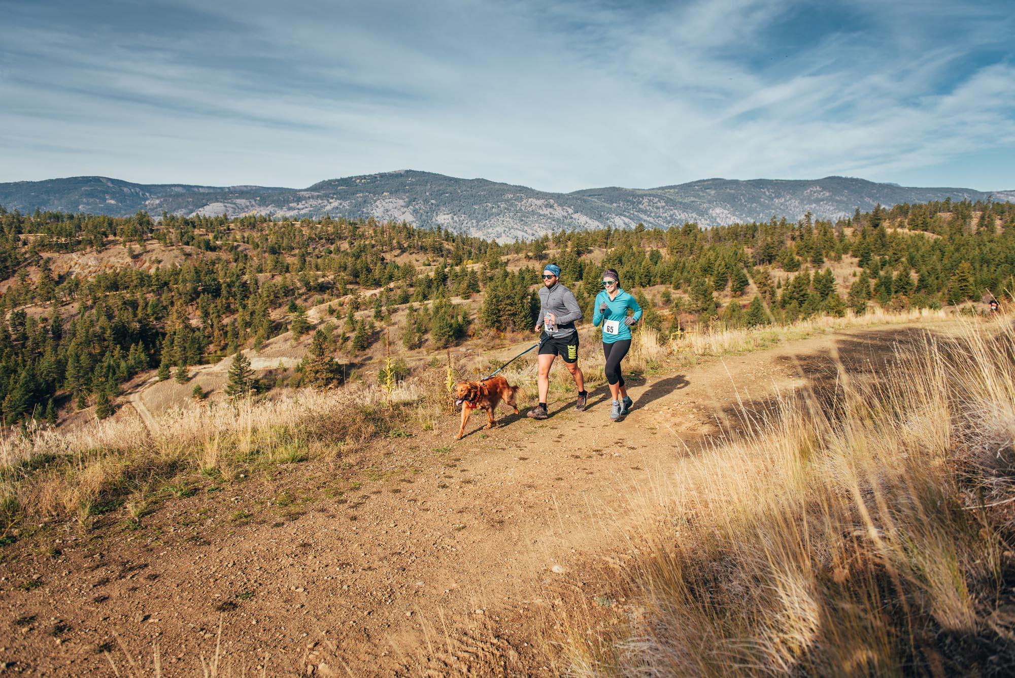 Wild One Virtual Run image